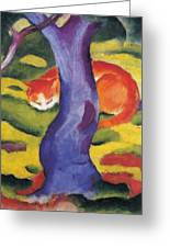 Cat Behind A Tree Greeting Card
