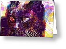 Cat Black View Close  Greeting Card