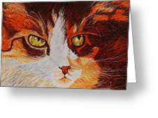 Cat Eye Greeting Card by Shahid Muqaddim