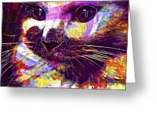 Cat Head Face Macro Close Up  Greeting Card