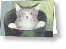 Cat In A Bucket Greeting Card