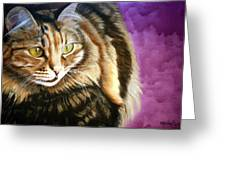 Cat In Purple Background Greeting Card