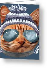 Cat Kitty Kitten In Clothes Aviators Toque Beanie Greeting Card
