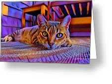 Cat Laying On Braided Rug Greeting Card