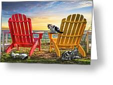 Cat Nap At The Beach Greeting Card by Debra and Dave Vanderlaan