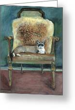 Cat On A Chair Greeting Card