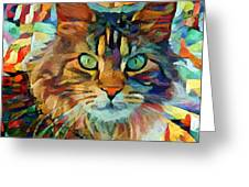 Cat On Colors Greeting Card