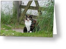 Farm Cat On Duty Greeting Card
