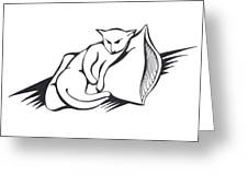 Cat On Pillow Greeting Card