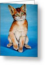 Cat Original Oil Painting Greeting Card