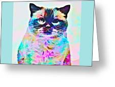 Cat Picture Greeting Card
