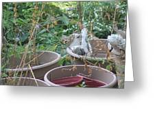 Cat Playing In Flowerpot Greeting Card