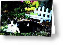 Cat Tale Greeting Card