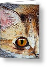 Cat Visions Greeting Card