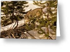 Cat Walk Greeting Card by Priscilla Burgers