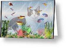 Cat Watching Fishtank Greeting Card