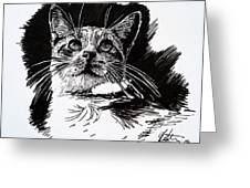 Cat With Ink Greeting Card