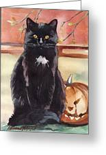 Cat With The Pumpkin Greeting Card