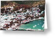 Catalina Greeting Card