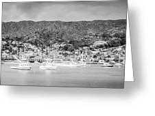 Catalina Island Avalon Bay Black And White Panorama Photo Greeting Card