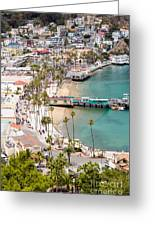 Catalina Island Avalon Waterfront Aerial Photo Greeting Card