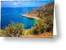 Catalina Island Lover's Cove Picture Greeting Card