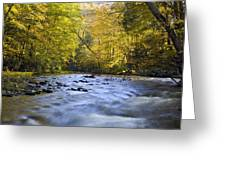 Cataloochee Valley River Greeting Card