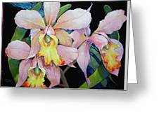 Catalya Arrangement Greeting Card