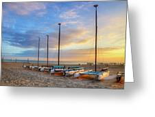 Catamarans In The Sun Greeting Card