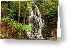 Cataract Falls In Great Smoky Mountains National Park Greeting Card