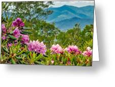 Catawba Rhododendron At The Craggy Greeting Card