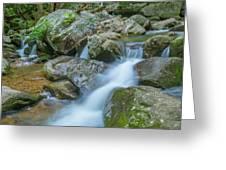 Catawba Stream Cascades At High Shoals Falls In North Carolina Greeting Card by Ranjay Mitra