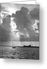 Catboat In Barnstable Harbor Greeting Card