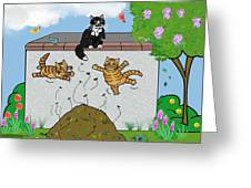 Tabby Cats Falling Greeting Card
