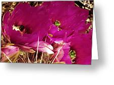 Catcus Flower Greeting Card