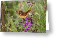 Caterpillar Reborn Greeting Card