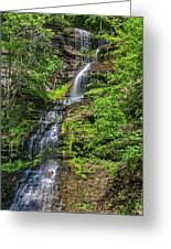 Cathedral Falls 2 Greeting Card