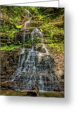 Cathedral Falls 3 Greeting Card