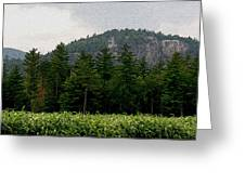 Cathedral Ledge North Conway Nh Greeting Card