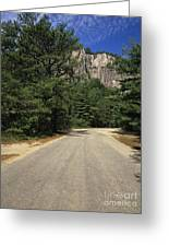 Cathedral Ledge State Park - Conway New Hampshire Usa Greeting Card