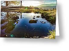 Catherine Creek Pond Greeting Card