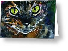 Cats Eyes 16 Greeting Card