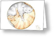 Cat's Harmony Greeting Card