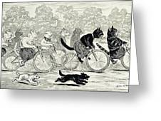Cats In A Bicycle Race, Hyde Park, 1896 Greeting Card