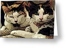 Cats In Bed Greeting Card by KR Moehr