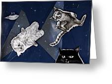 Cats In Space Greeting Card