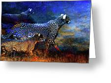 Cats On The Prowl Greeting Card