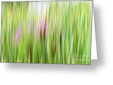 Cattails And Flowers Greeting Card