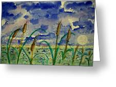 Cattails And Moonlight Greeting Card