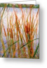 Cattails By The Lake Greeting Card